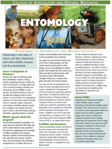 entomology--major-pdf-thumb