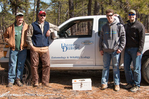 UD part of study to bring bobwhite quail back to New Jersey Pine Barrens