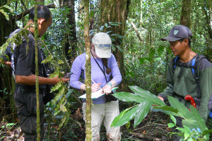 Sarah Weiskopf studied leeches to look at mammal biodiversity in Sumatra
