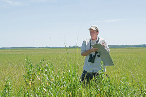 Greg Shriver conducts field work on bird habitats.