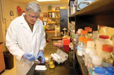 Dr. Rolf Joerger Associate Professor, Food Microbiology