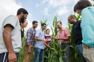 "Blake Meyers, the Edward F. and Elizabeth Goodman Rosenberg Professor and Chair for Plant and Soil Sciences in the College of Agriculture and Natural Resources, along with his research team Kun Huang, Atul Kakrana, Parth Patel, TC, Saleh Tamim, Reza Hammond, and Sandra Mathioni in plots of corn on the UD farm. Dr. Meyers's ""research includes programs that emphasize bioinformatics and plant functional genomics."""