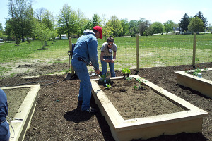 UD Cooperative Extension is assisting with local urban gardens and farms.