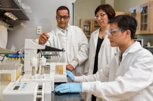 Drs. Deb Jaisi, Yan Jin and Dengjun Wang are doing research involving how nanoparticles can help with the phosphorous release in soil.